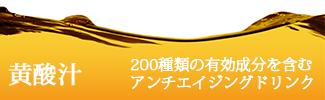 サジー黄酸汁
